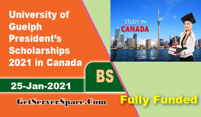 University of Guelph President's Scholarships 2021 in Canada [Fully Funded]