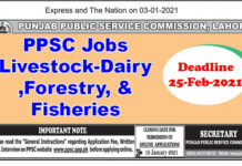 PPSC Jobs Livestock-Dairy Development &Forestry, & Fisheries Department